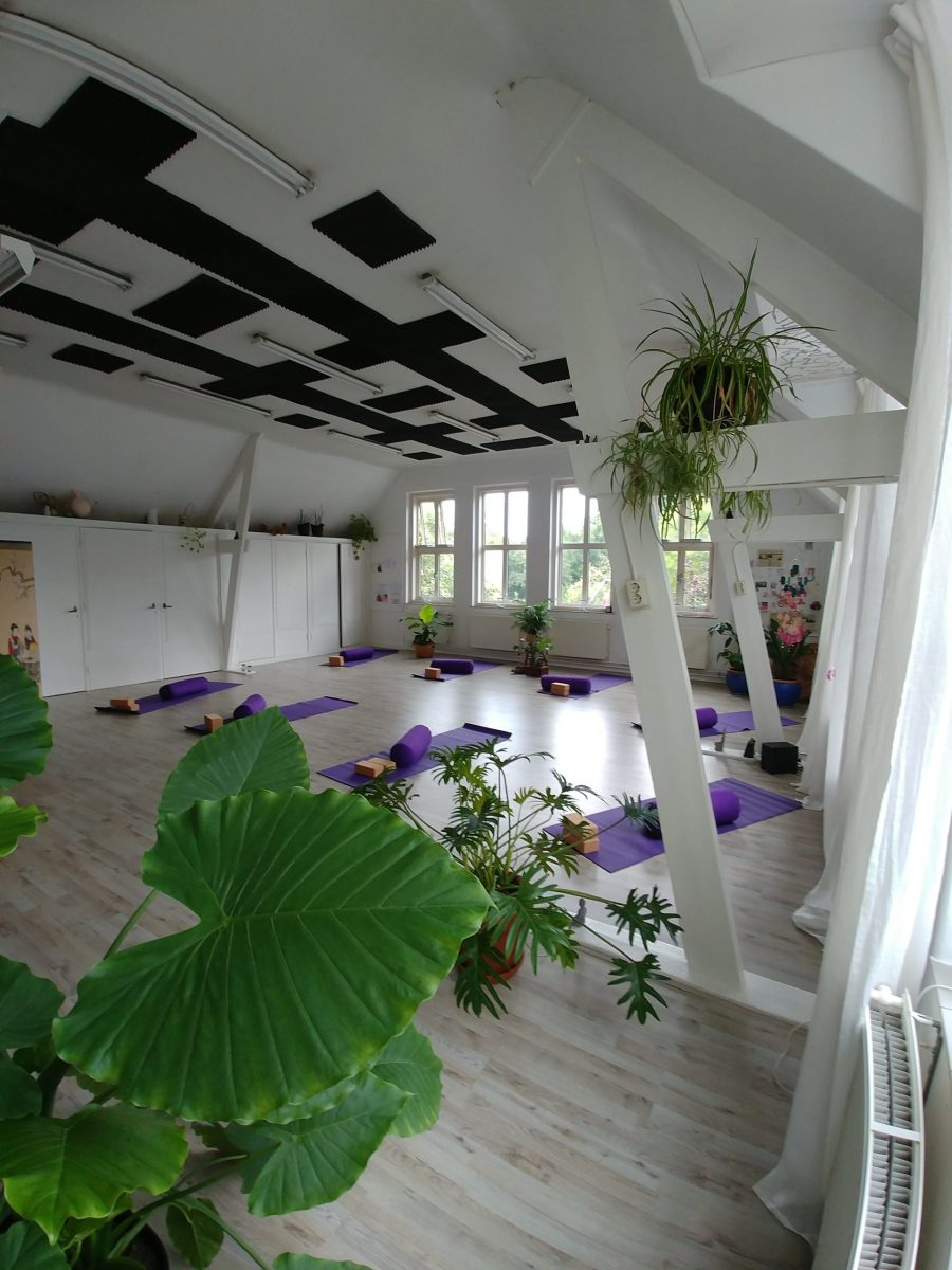 Yogalein yin yoga vught